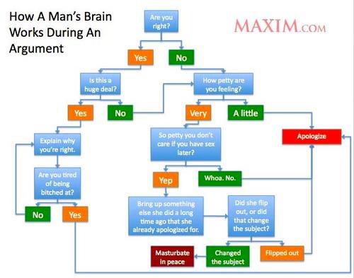 men brain